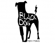 Бар «BLACK DOG: brew & music»